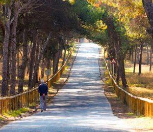 4 Rutas de senderismo con las que descubrir Guardamar del Segura