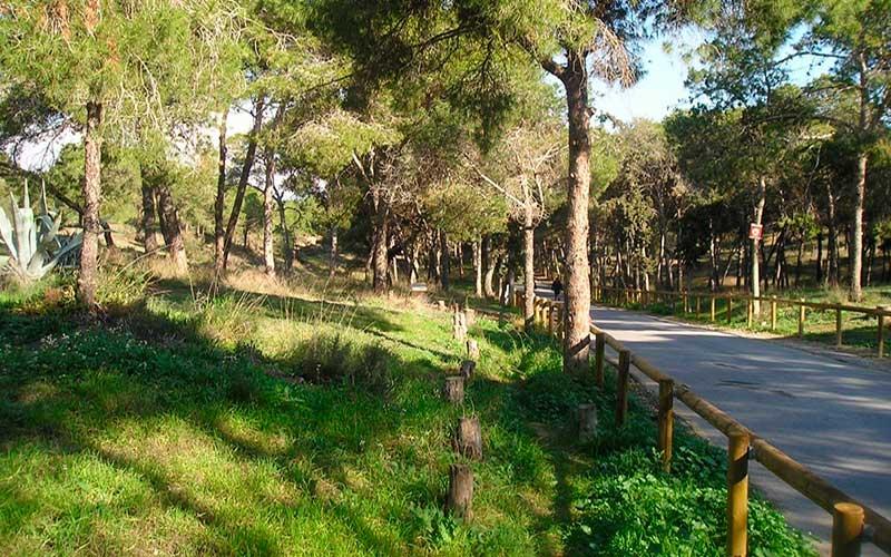 Parque Guardamar del Segura